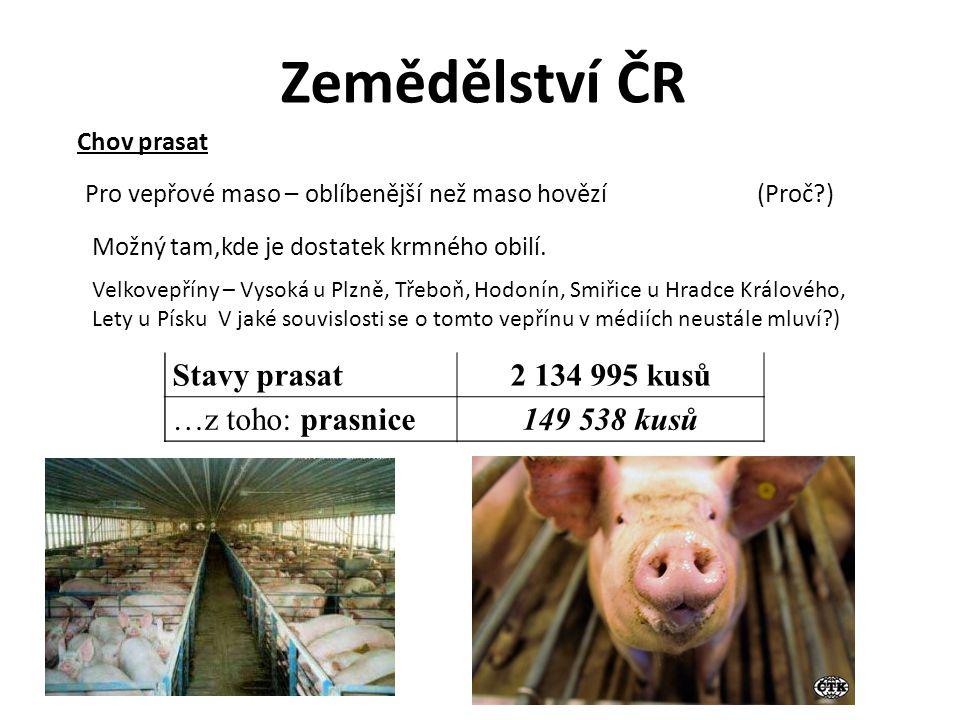 Zemědělství ČR Stavy prasat 2 134 995 kusů …z toho: prasnice