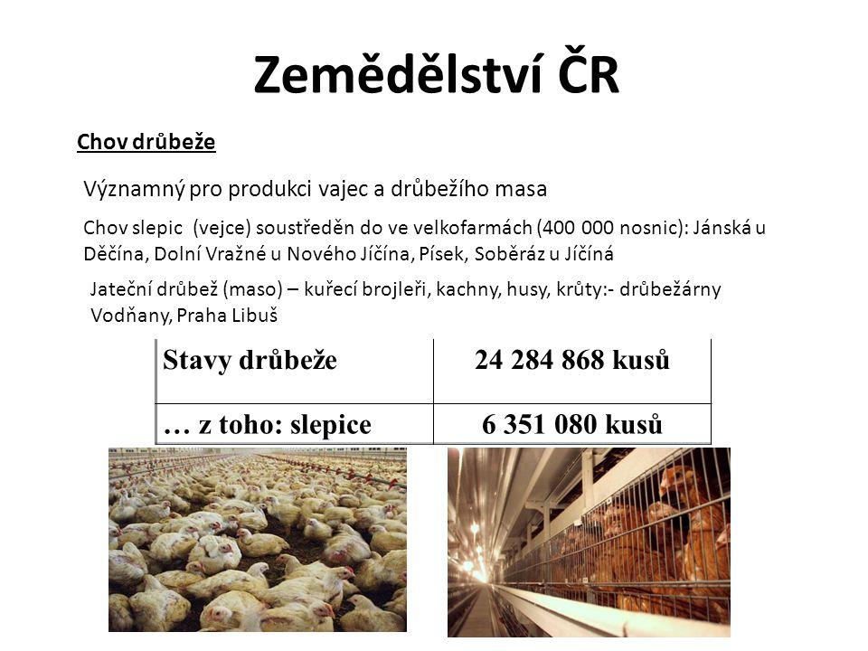 Zemědělství ČR Stavy drůbeže 24 284 868 kusů … z toho: slepice