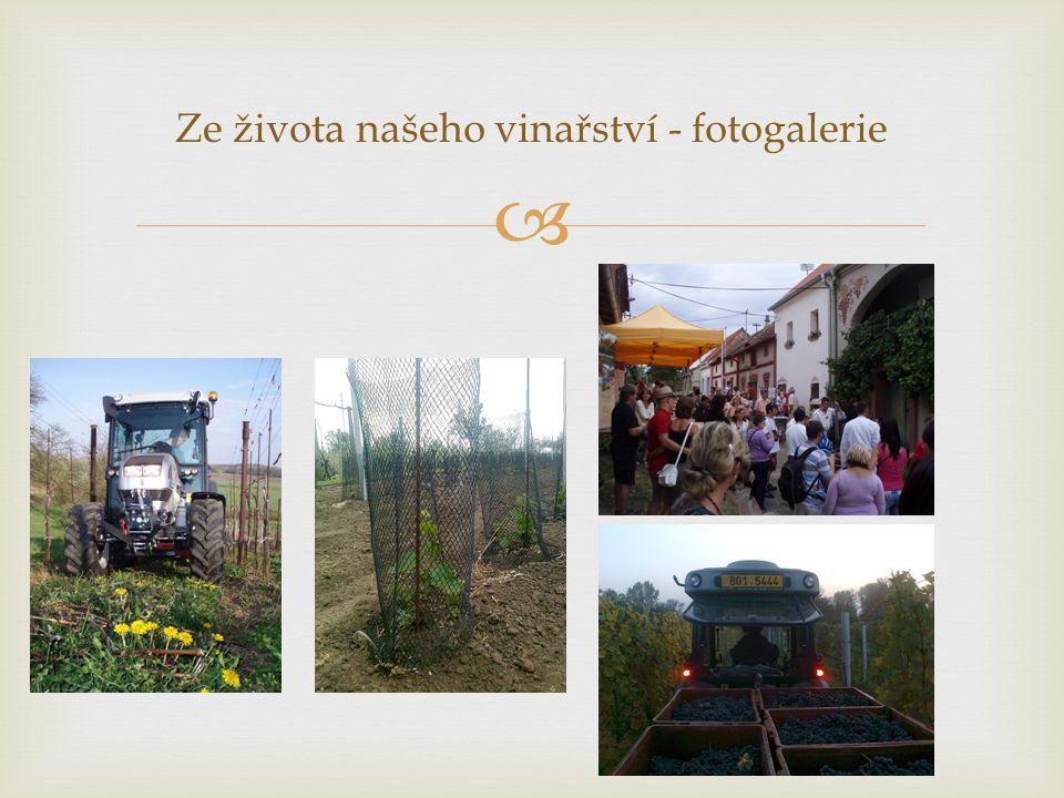 Ze života našeho vinařství - fotogalerie