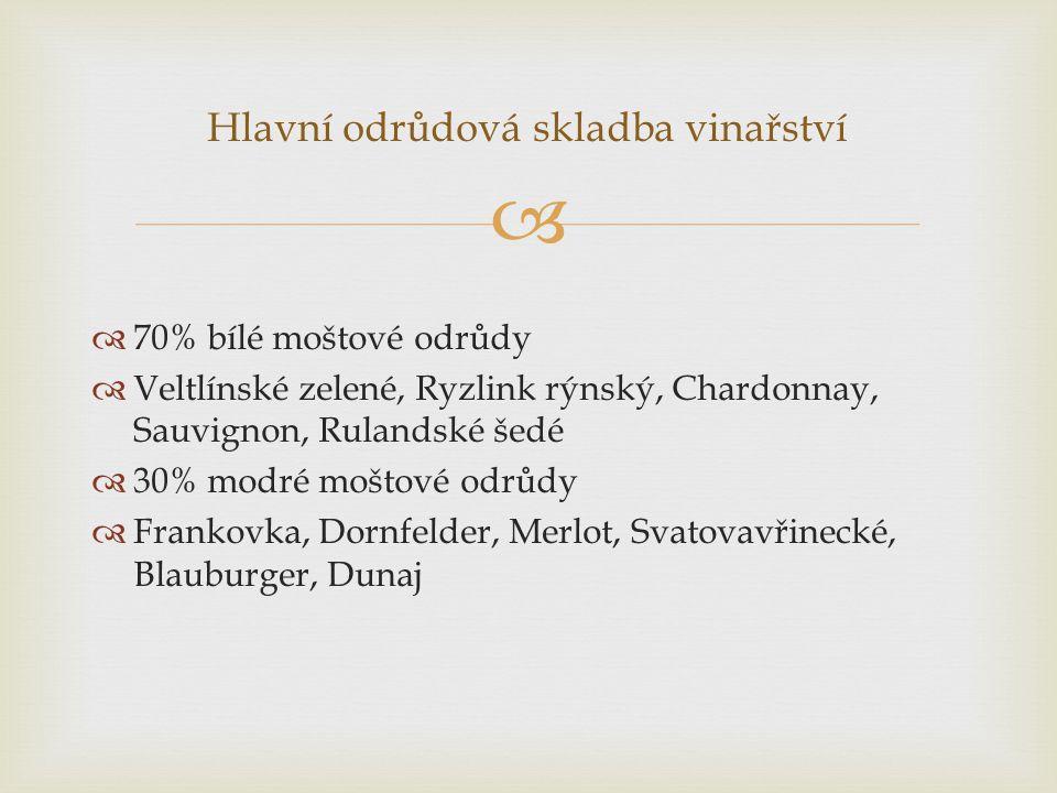 Hlavní odrůdová skladba vinařství