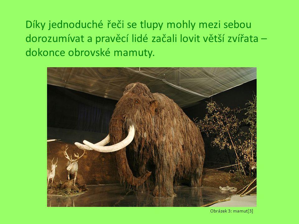 Díky jednoduché řeči se tlupy mohly mezi sebou dorozumívat a pravěcí lidé začali lovit větší zvířata – dokonce obrovské mamuty.