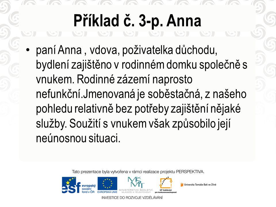 Příklad č. 3-p. Anna