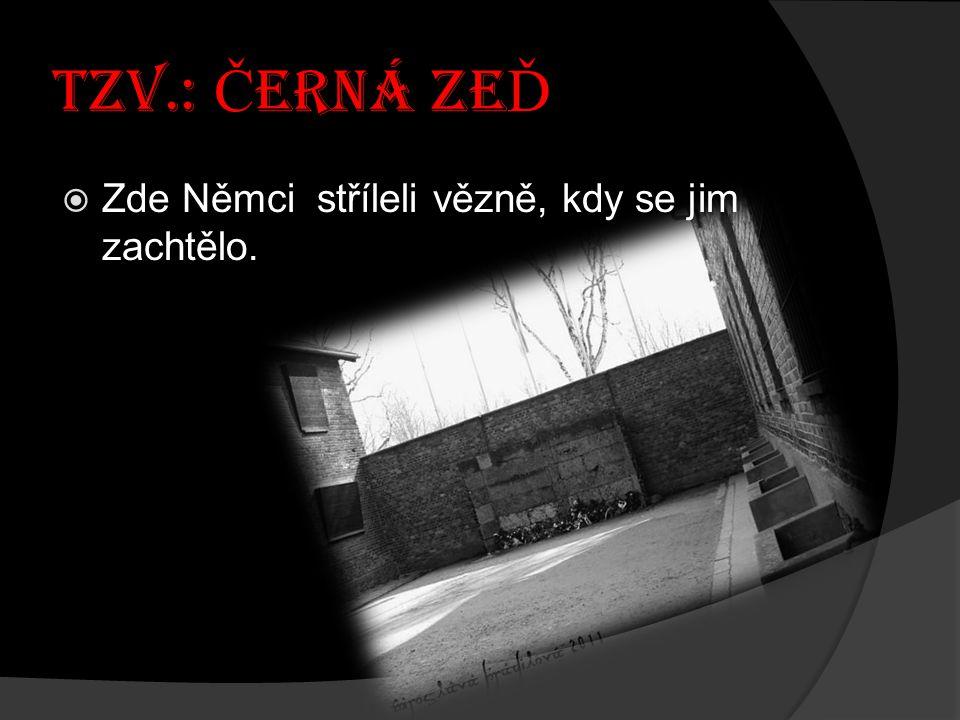 TZV.: ČERNÁ ZEĎ Zde Němci stříleli vězně, kdy se jim zachtělo.