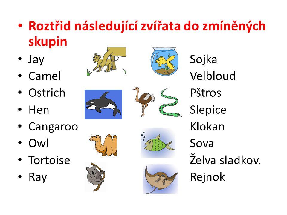 Roztřid následující zvířata do zmíněných skupin