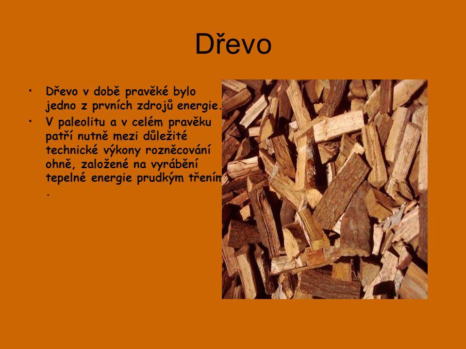 Dřevo Dřevo v době pravěké bylo jedno z prvních zdrojů energie.