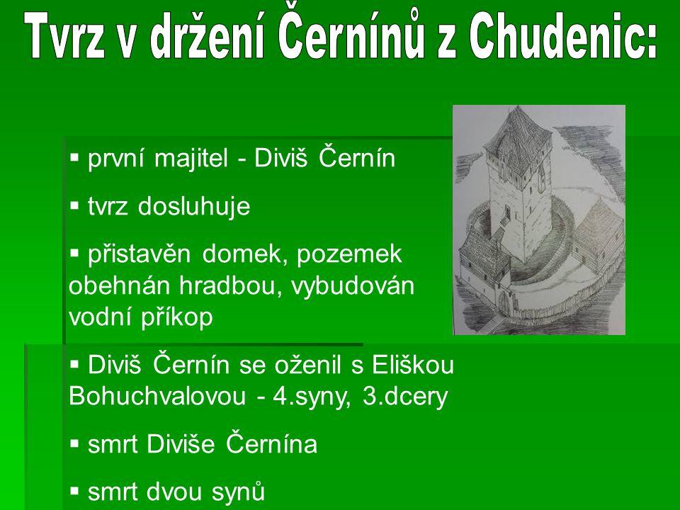 Tvrz v držení Černínů z Chudenic: