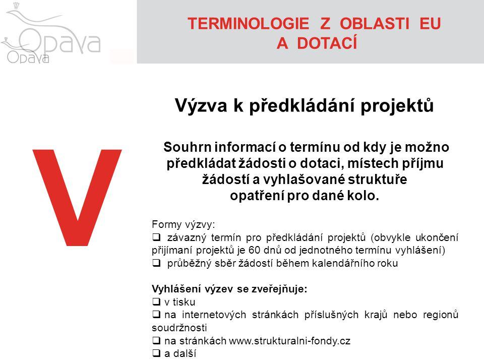 TERMINOLOGIE Z OBLASTI EU Výzva k předkládání projektů