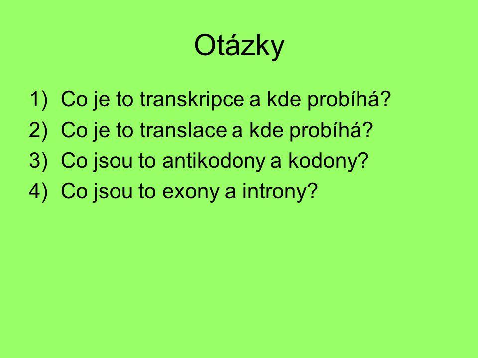 Otázky Co je to transkripce a kde probíhá