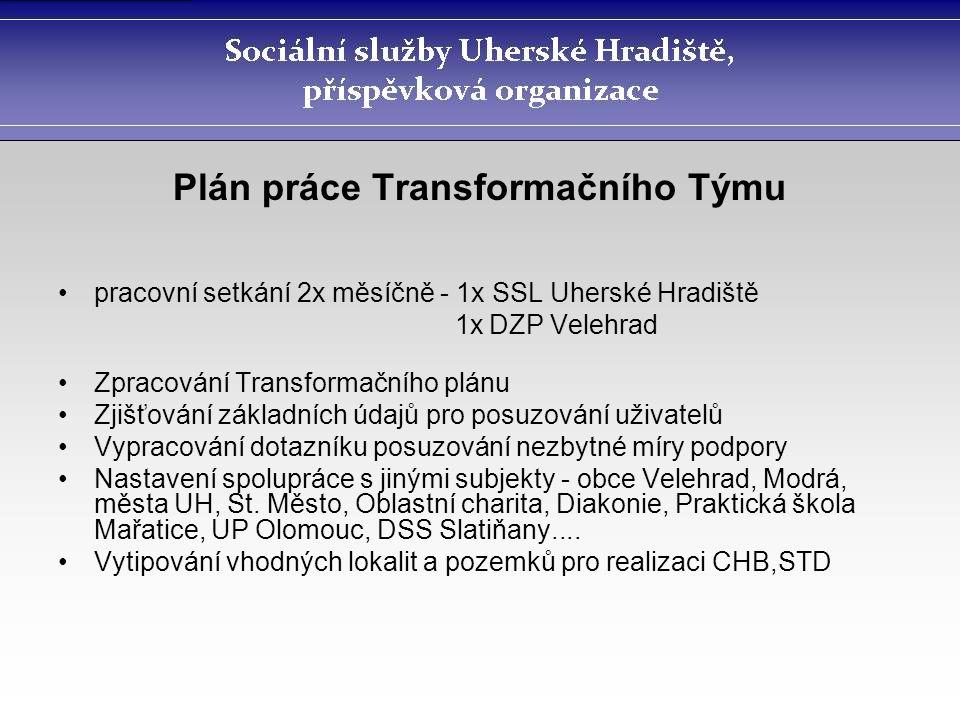 Plán práce Transformačního Týmu