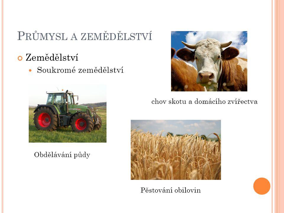 Průmysl a zemědělství Zemědělství Soukromé zemědělství