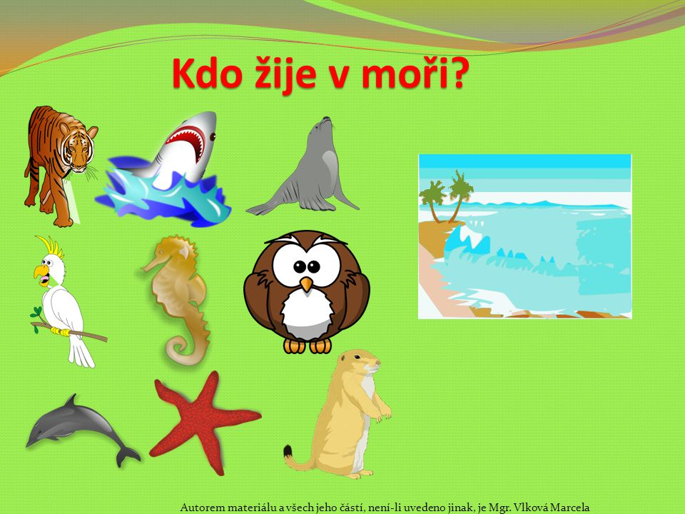 Kdo žije v moři. Autorem materiálu a všech jeho částí, není-li uvedeno jinak, je Mgr.