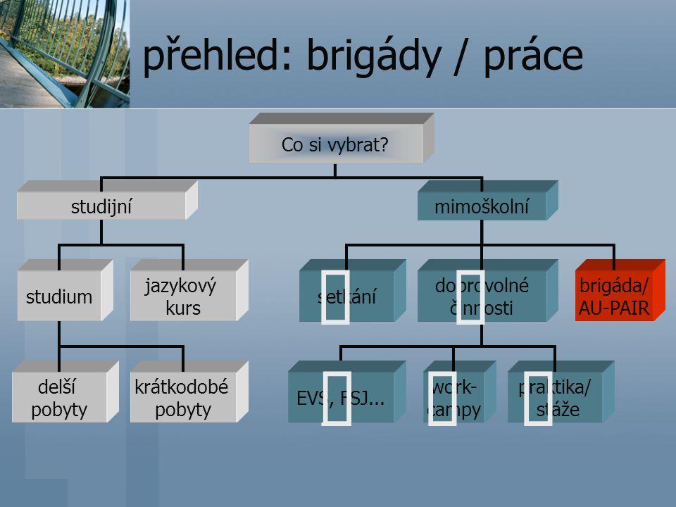 přehled: brigády / práce