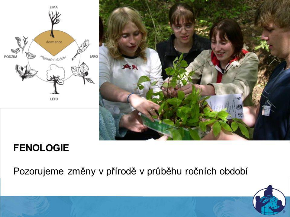 Fenologie FENOLOGIE Pozorujeme změny v přírodě v průběhu ročních období