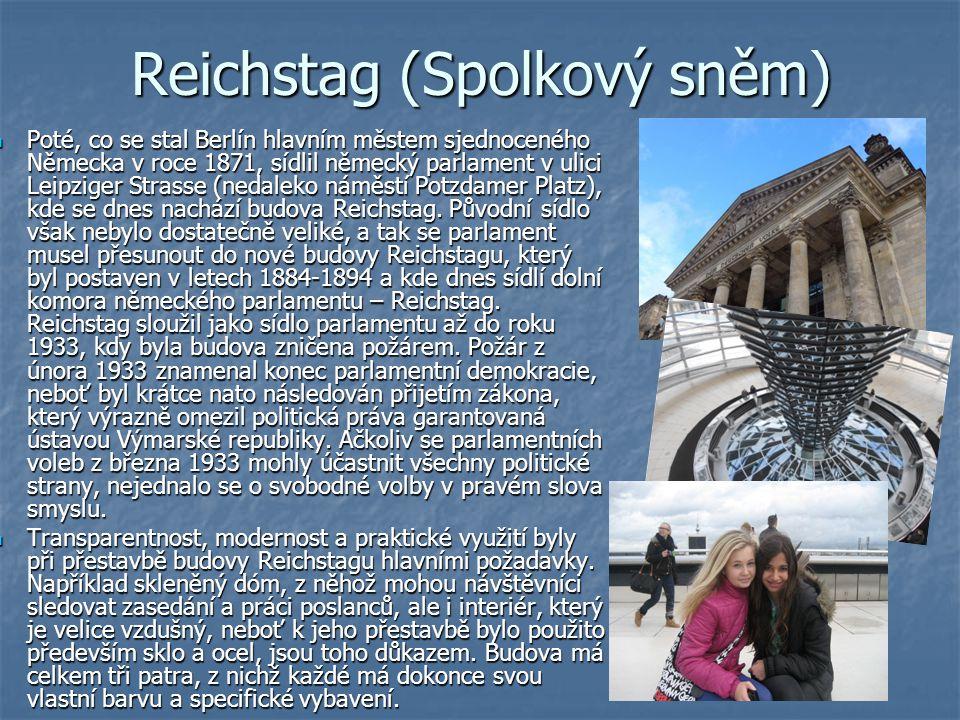 Reichstag (Spolkový sněm)