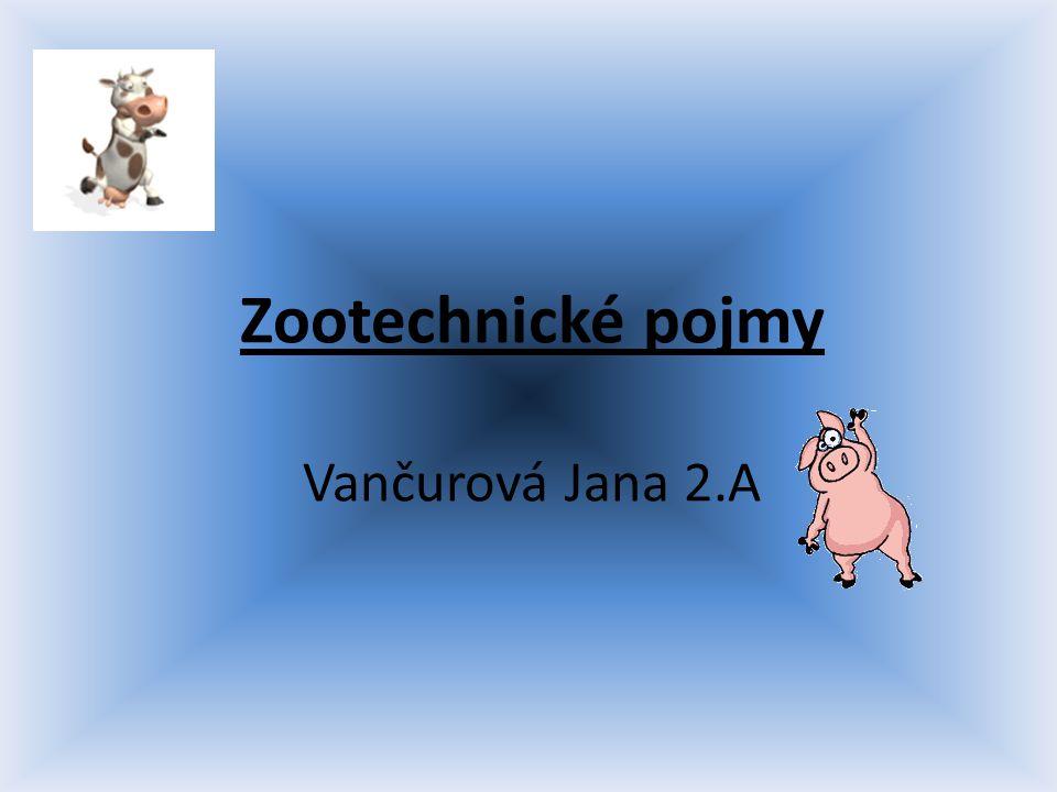 Zootechnické pojmy Vančurová Jana 2.A
