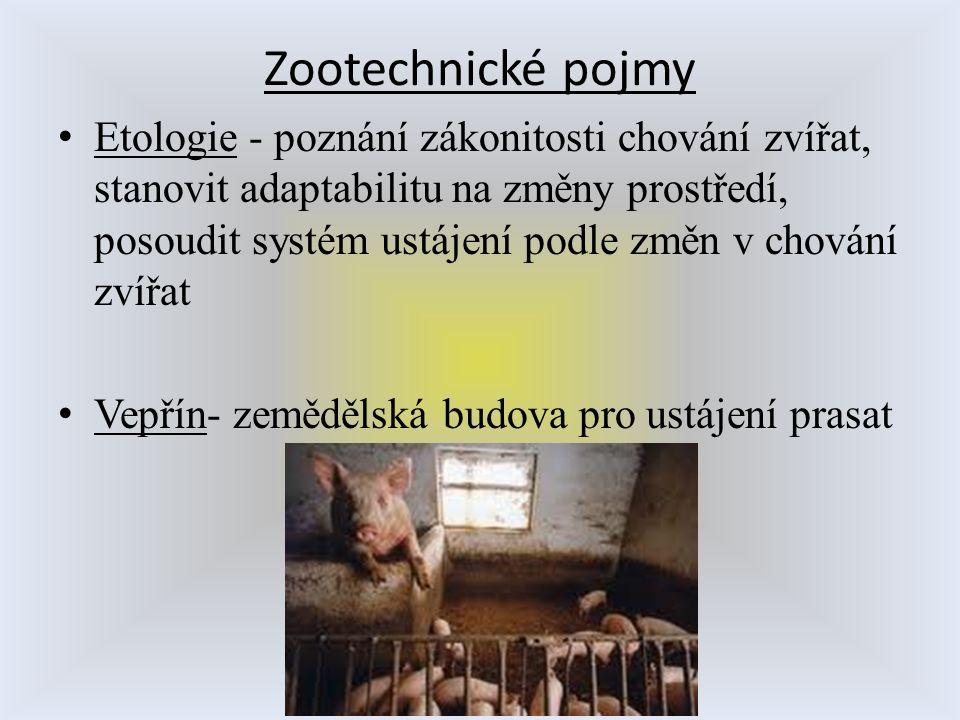 Zootechnické pojmy