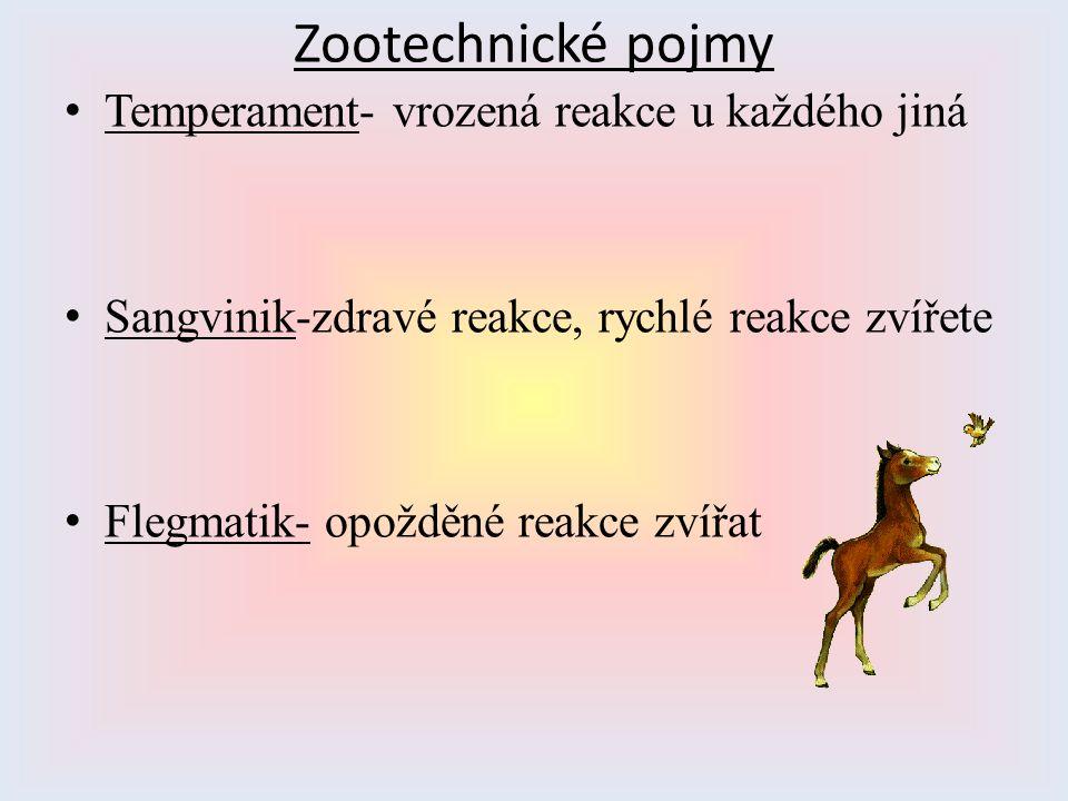 Zootechnické pojmy Temperament- vrozená reakce u každého jiná