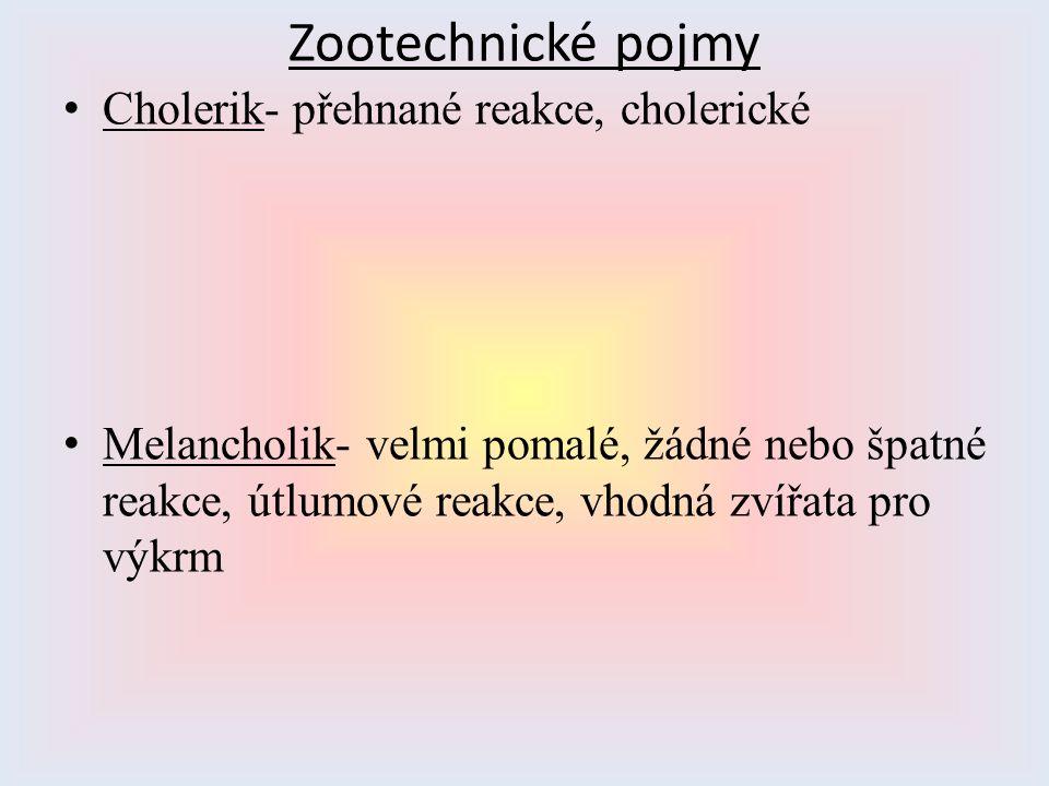 Zootechnické pojmy Cholerik- přehnané reakce, cholerické