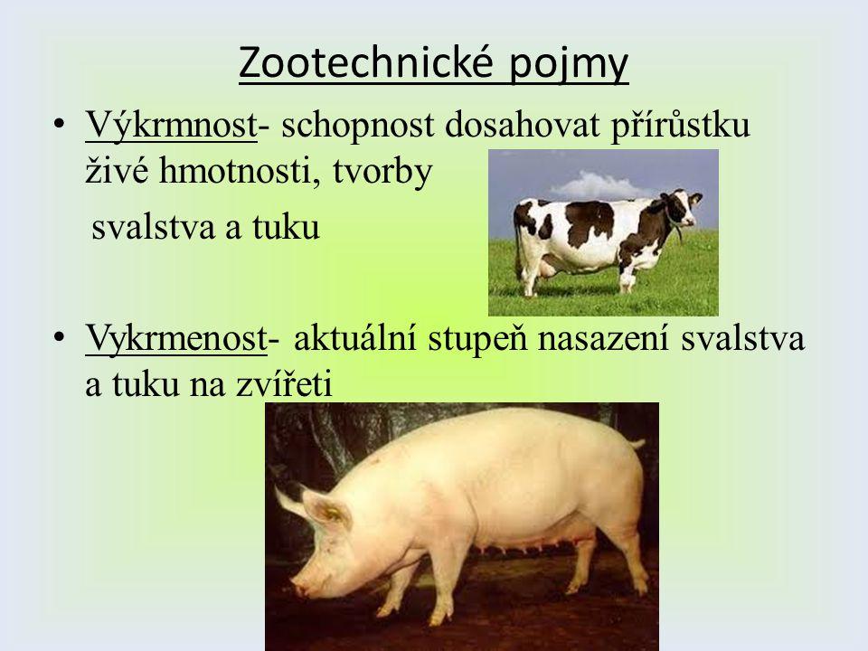 Zootechnické pojmy Výkrmnost- schopnost dosahovat přírůstku živé hmotnosti, tvorby. svalstva a tuku.