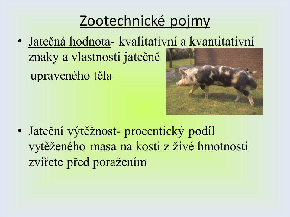 Zootechnické pojmy Jatečná hodnota- kvalitativní a kvantitativní znaky a vlastnosti jatečně. upraveného těla.