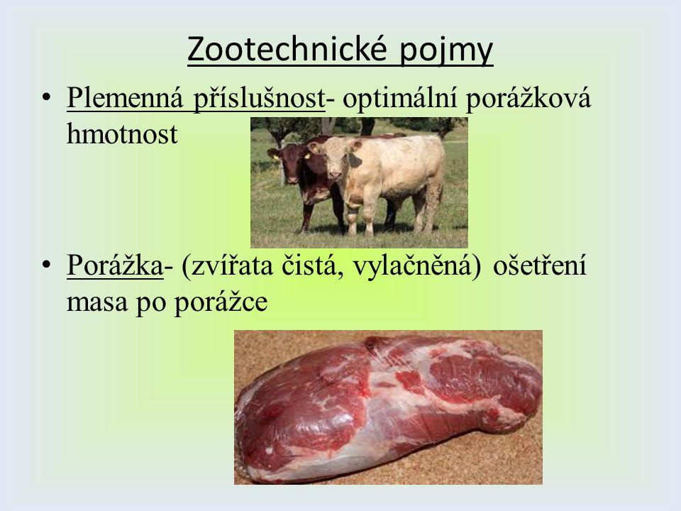 Zootechnické pojmy Plemenná příslušnost- optimální porážková hmotnost