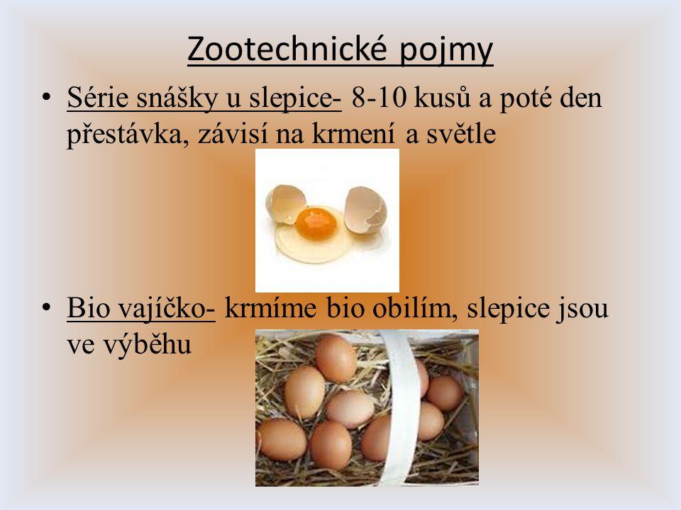 Zootechnické pojmy Série snášky u slepice- 8-10 kusů a poté den přestávka, závisí na krmení a světle.