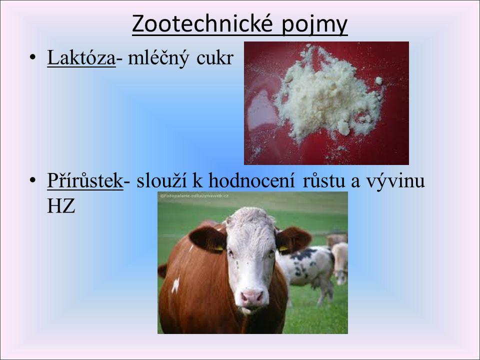 Zootechnické pojmy Laktóza- mléčný cukr