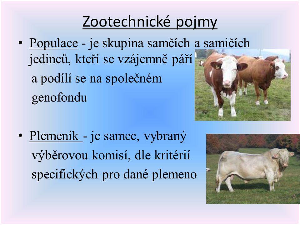 Zootechnické pojmy Populace - je skupina samčích a samičích jedinců, kteří se vzájemně páří. a podílí se na společném.