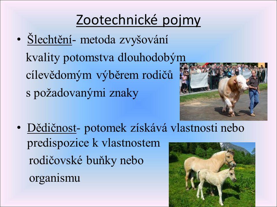 Zootechnické pojmy Šlechtění- metoda zvyšování