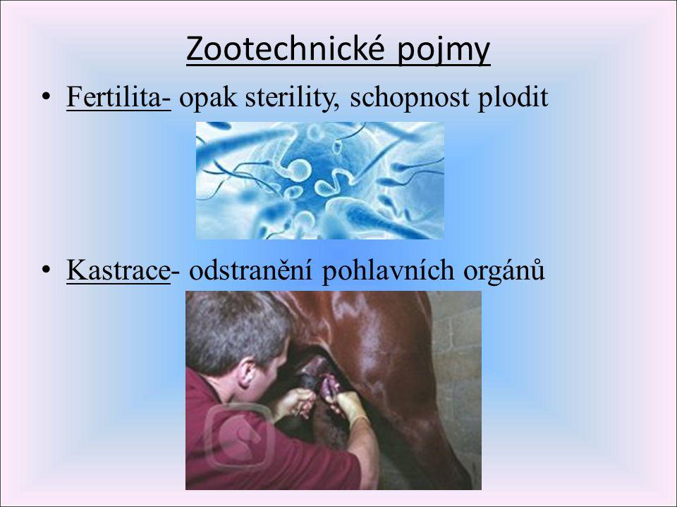 Zootechnické pojmy Fertilita- opak sterility, schopnost plodit
