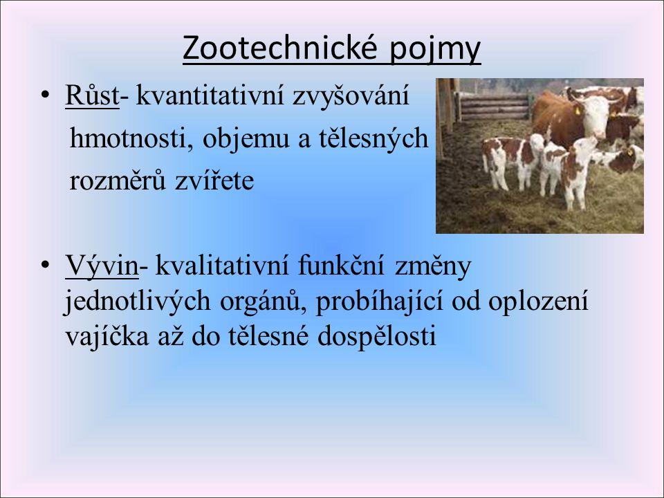 Zootechnické pojmy Růst- kvantitativní zvyšování