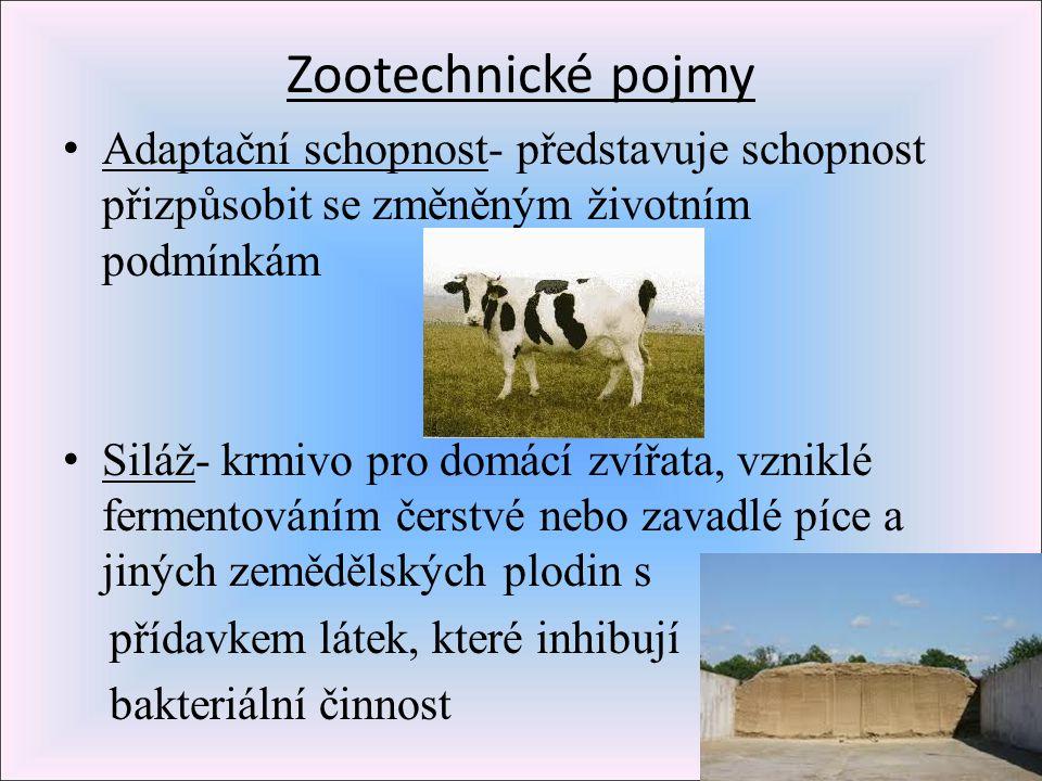 Zootechnické pojmy Adaptační schopnost- představuje schopnost přizpůsobit se změněným životním podmínkám.