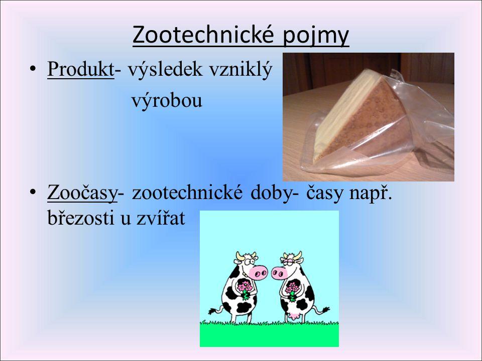 Zootechnické pojmy Produkt- výsledek vzniklý výrobou
