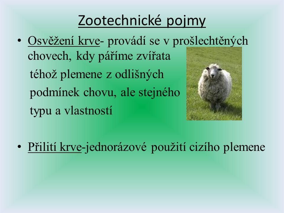 Zootechnické pojmy Osvěžení krve- provádí se v prošlechtěných chovech, kdy páříme zvířata. téhož plemene z odlišných.