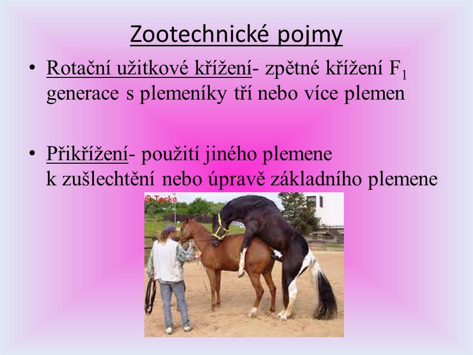 Zootechnické pojmy Rotační užitkové křížení- zpětné křížení F1 generace s plemeníky tří nebo více plemen.