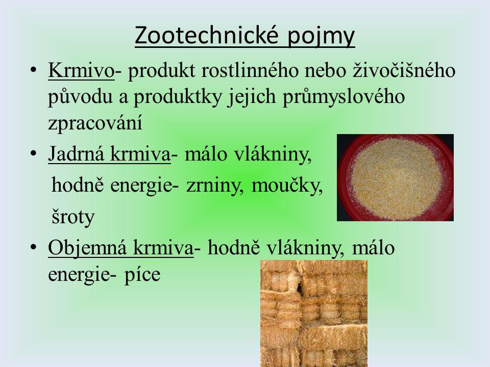 Zootechnické pojmy Krmivo- produkt rostlinného nebo živočišného původu a produktky jejich průmyslového zpracování.