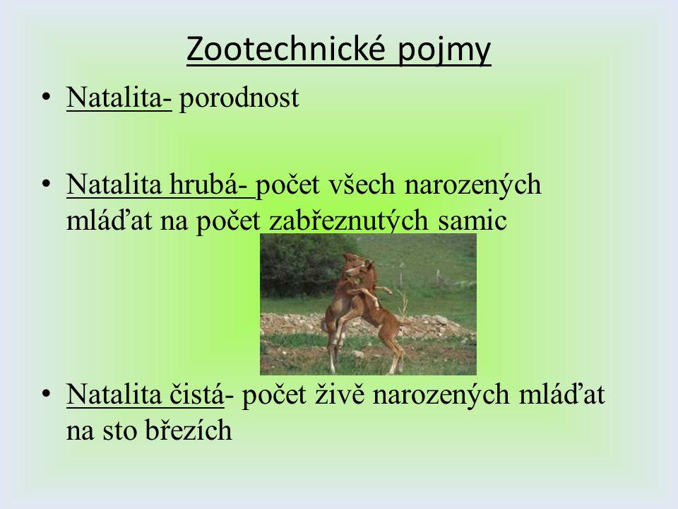 Zootechnické pojmy Natalita- porodnost