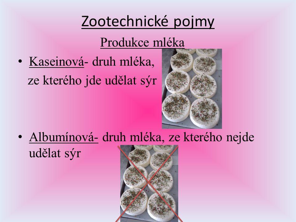 Zootechnické pojmy Produkce mléka Kaseinová- druh mléka,