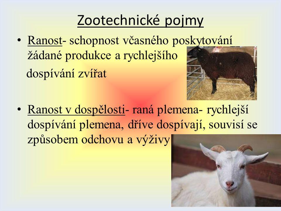 Zootechnické pojmy Ranost- schopnost včasného poskytování žádané produkce a rychlejšího. dospívání zvířat.