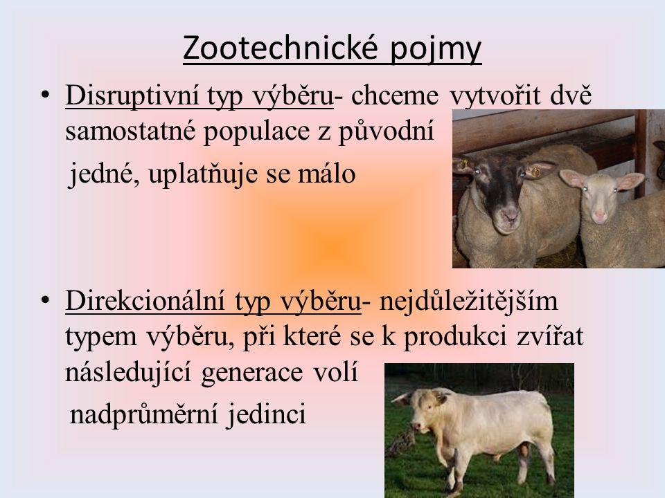 Zootechnické pojmy Disruptivní typ výběru- chceme vytvořit dvě samostatné populace z původní. jedné, uplatňuje se málo.