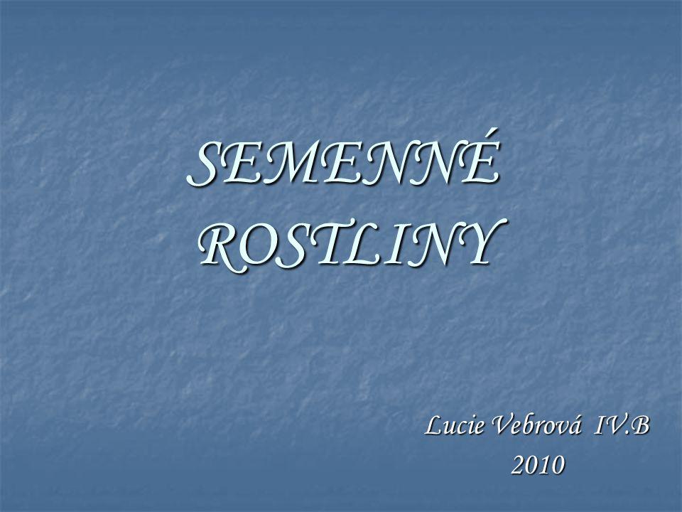 SEMENNÉ ROSTLINY Lucie Vebrová IV.B 2010