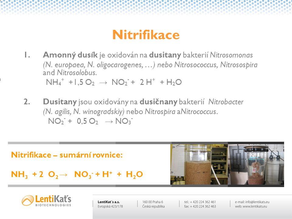 Nitrifikace Amonný dusík je oxidován na dusitany bakterií Nitrosomonas