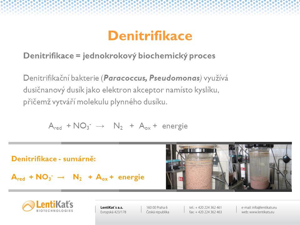 Denitrifikace Denitrifikace = jednokrokový biochemický proces