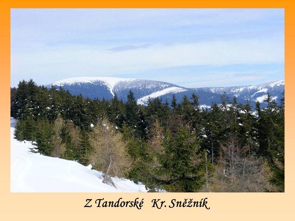 Z Tandorské Kr. Sněžník