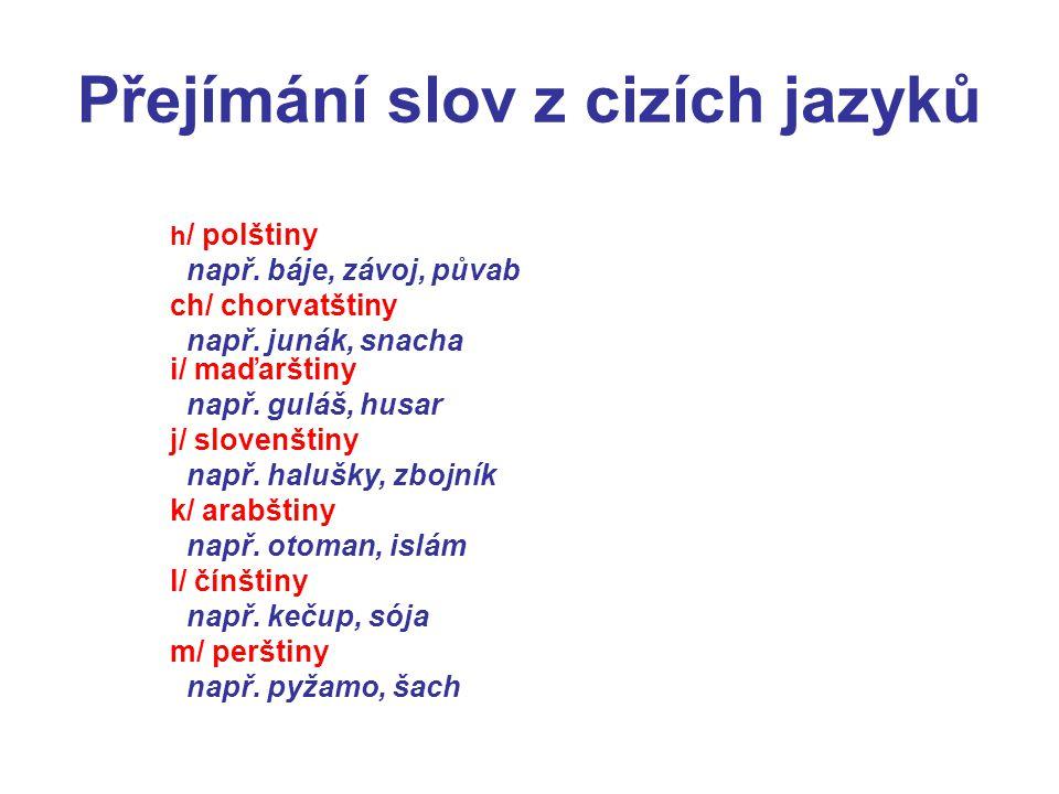 Přejímání slov z cizích jazyků