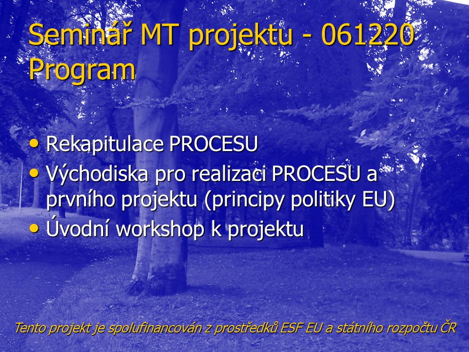 Seminář MT projektu - 061220 Program