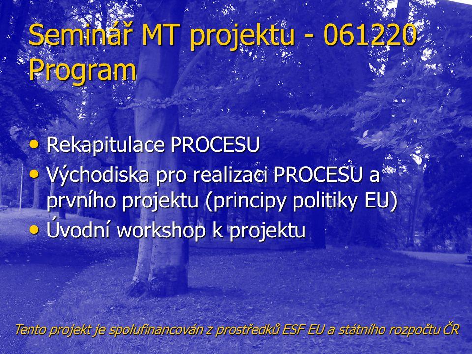 Seminář MT projektu - 061220 Program
