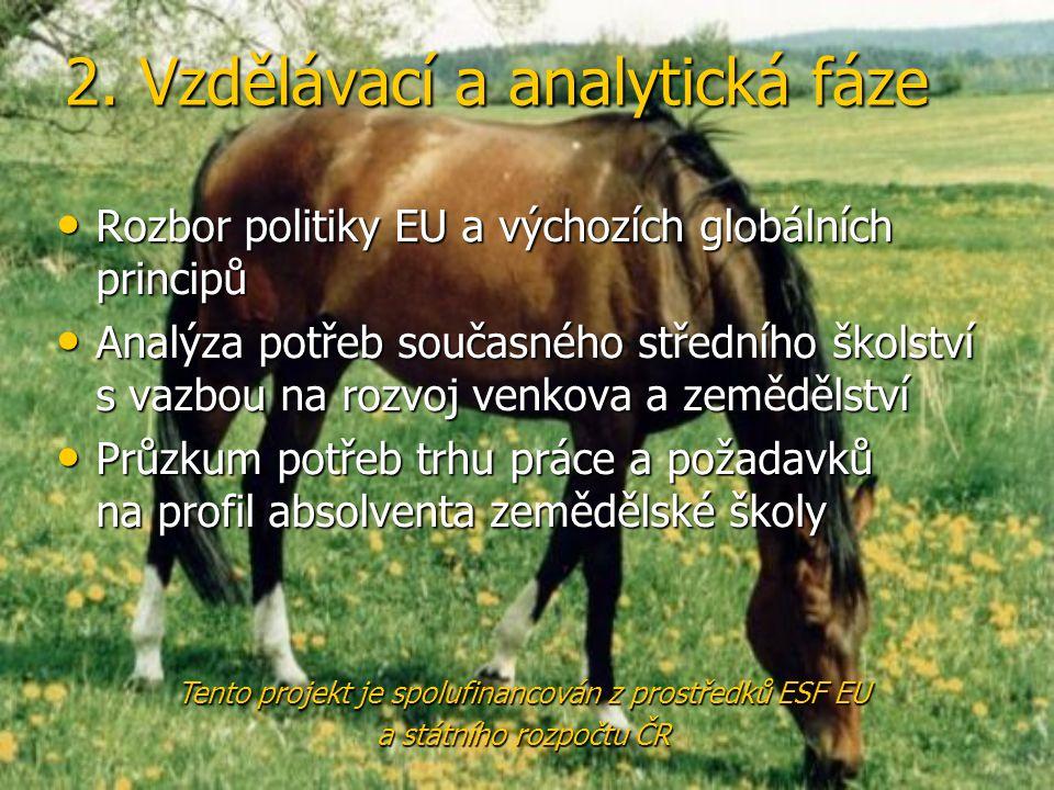 2. Vzdělávací a analytická fáze