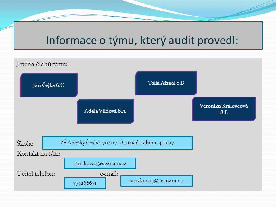 Informace o týmu, který audit provedl: