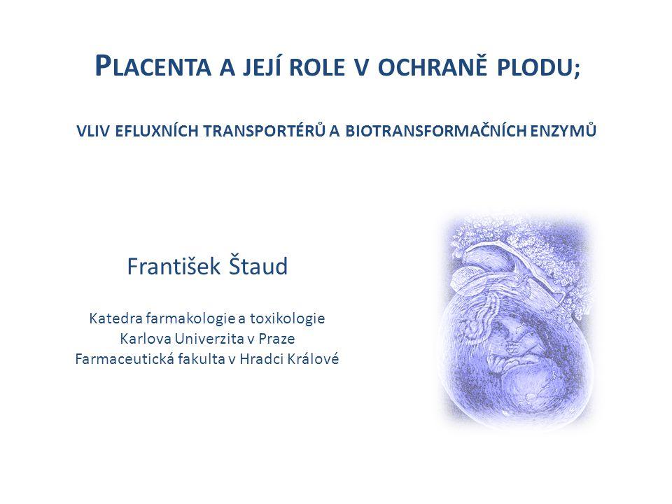 Placenta a její role v ochraně plodu; vliv efluxních transportérů a biotransformačních enzymů